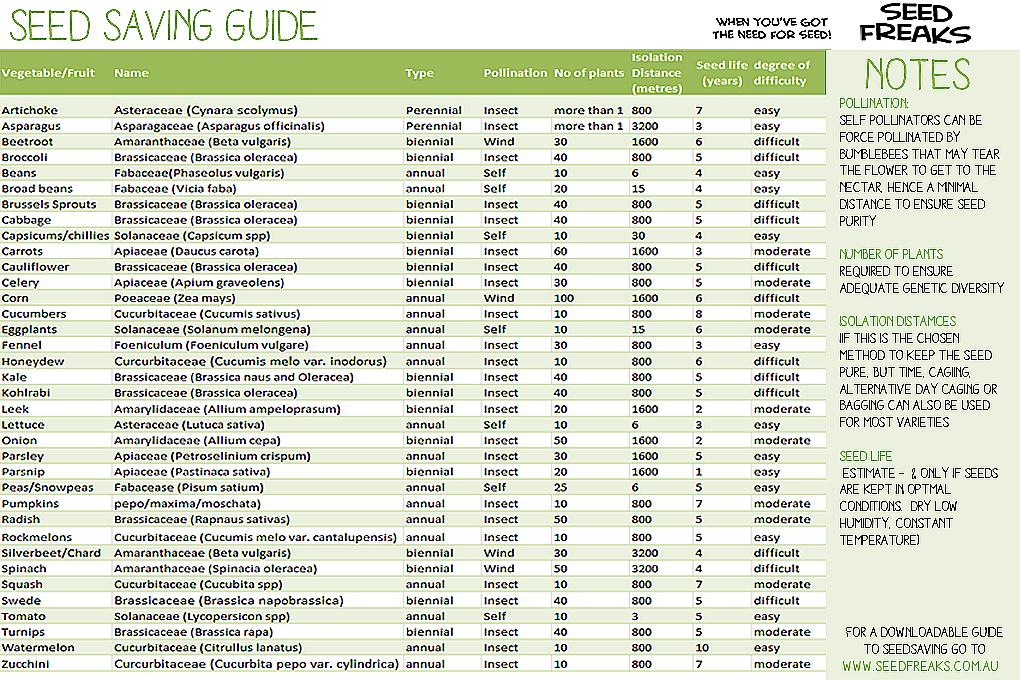 seedsaving-chart2