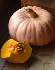 Pumpkins-Cucumbers-Zucchini-Melons