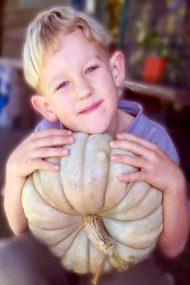 Pumpkin & Gourds